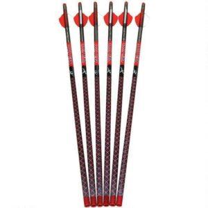 Parker Bows RED HOT High Velocity Carbon Bolt 20″ Capture Nocks 2.1″ Vanes Black 6 Pack